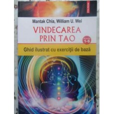 VINDECAREA PRIN TAO. NIVELURILE 1-6. GHID ILUSTRAT CU EXERCITII DE BAZA